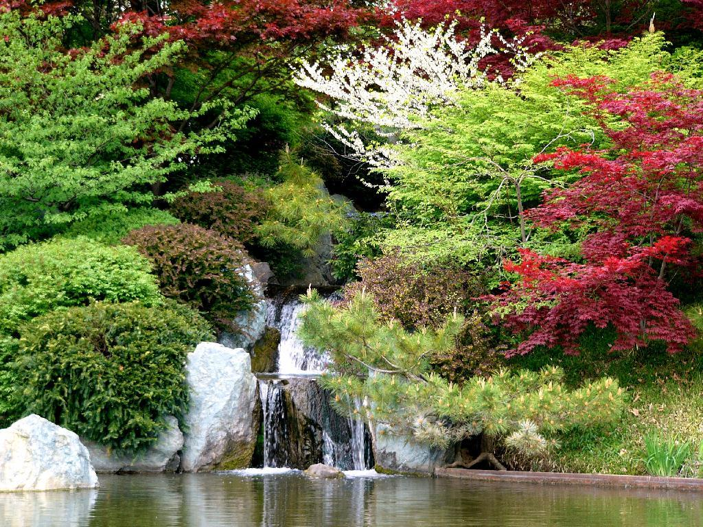 Los bellos jardines japoneses taringa for Jardines bellos fotos